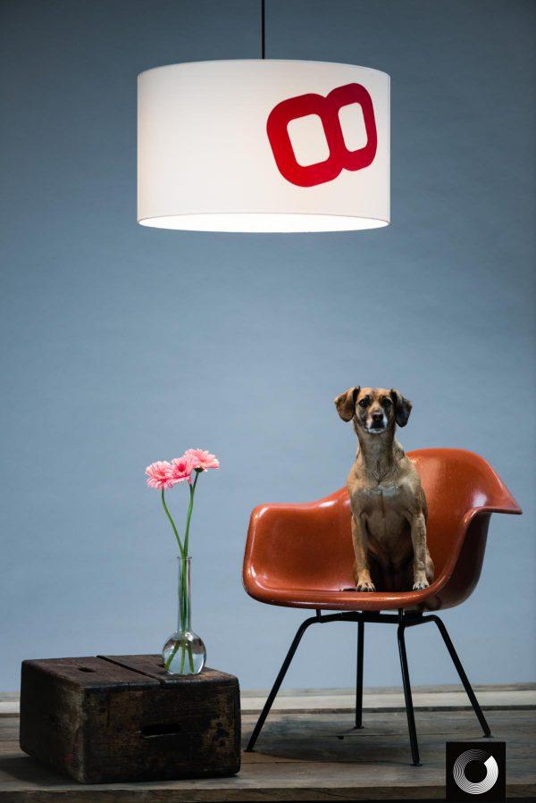 lumbono_Deckenleuchte Heimathafen-Achterschiff60-rot_mit Hund